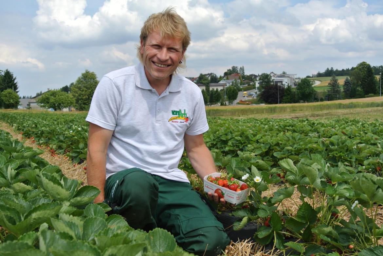 Herbert vonArb mit Erdbeeren