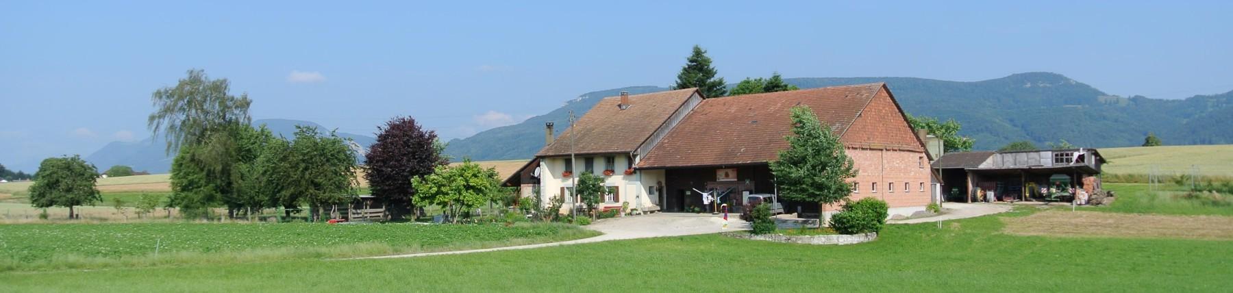 Moos Neuendorf